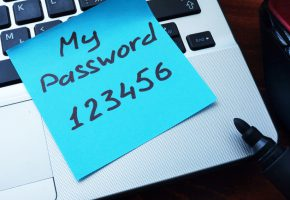 Insecure Passwords